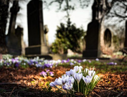Der Tod als Teil unseres Lebens